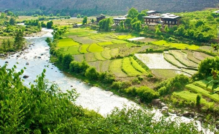 bhoutan agriculture biologique