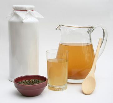 kombucha thé