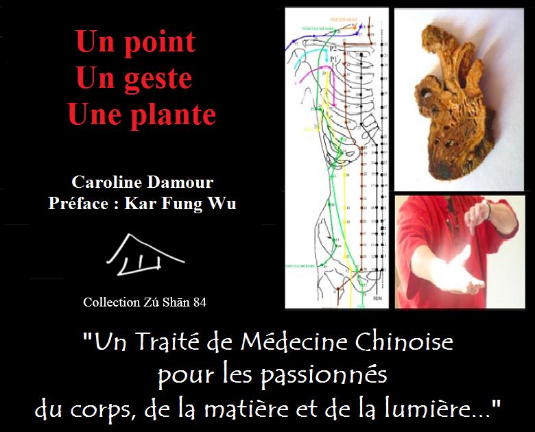 Traité de médecine traditionnelle chinoise - Un point, un geste, une plante