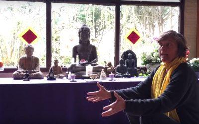 Bouddhisme et Médecine Traditionnelle Chinoise – Caroline Damour au Village des Pruniers